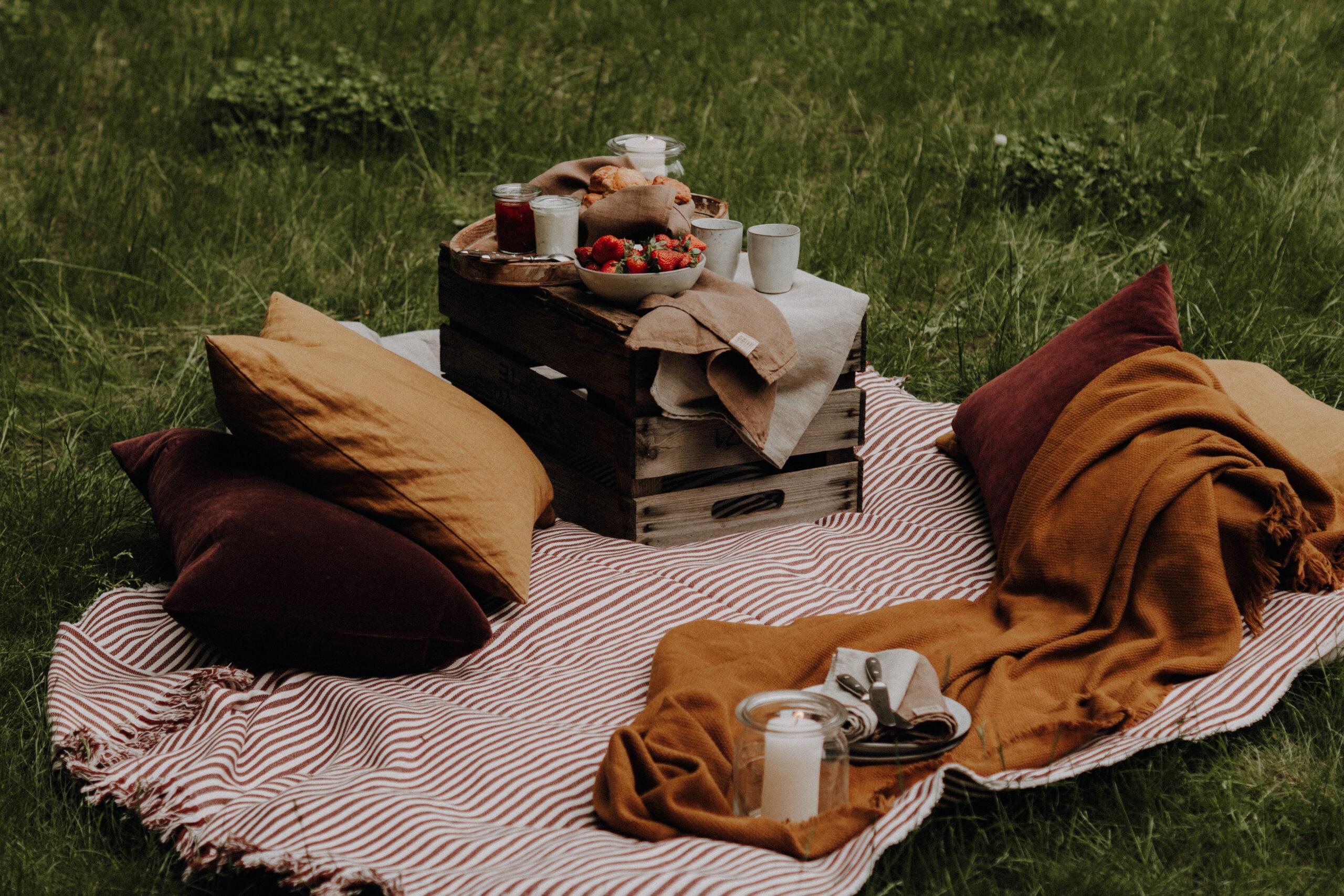 Pack die Picknick-Decke ein und ab nach Draußen mit Scones und Cream