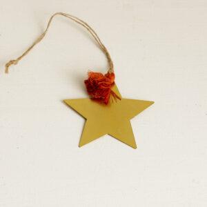 Kleiner Weihnachtsstern gold Bei Blumenthals